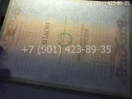 Диплом магистра 2004-2009 годов, старого образца, титульный лист-2