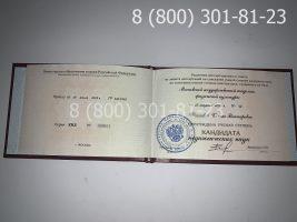 Диплом кандидата наук с заполнением, образец, титульный лист-2