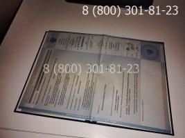 Диплом специалиста 2009-2010 годов с заполнением, приложение-1