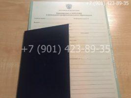 Диплом ПТУ 2008-2014 годов, нового образца, титульный лист с приложением