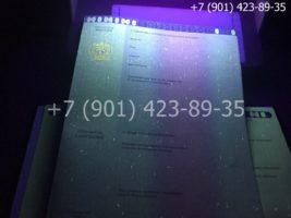 Диплом бакалавра 2014-2020 годов, образец, приложение под УФ лампой