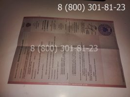 Диплом техникума 1997-2003 годов с заполнением, приложение-1