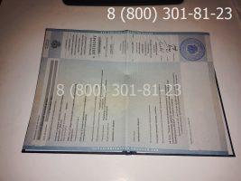 Диплом специалиста 2002-2008 годов с заполнением, приложение-1