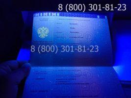 Диплом специалиста 2014-2020 годов с заполнением, приложение под УФ лампой