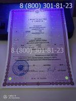 Свидетельство о смерти с заполнением, бланк под УФ лампой