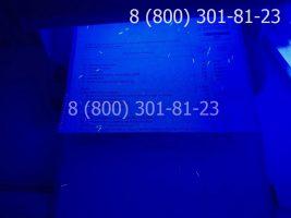 Диплом магистра 1997-2003 годов с заполнением, приложение под УФ лампой-1