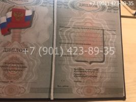 Диплом ПТУ 2008-2014 годов, нового образца, титульный лист-1