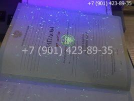 Диплом специалиста 2009-2010 годов, старого образца, титульный лист под УФ лампой