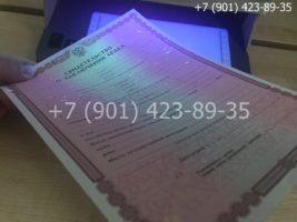 Свидетельство о браке, бланк под УФ лампой