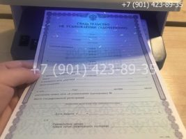 Свидетельство об усыновлении, бланк под УФ лампой